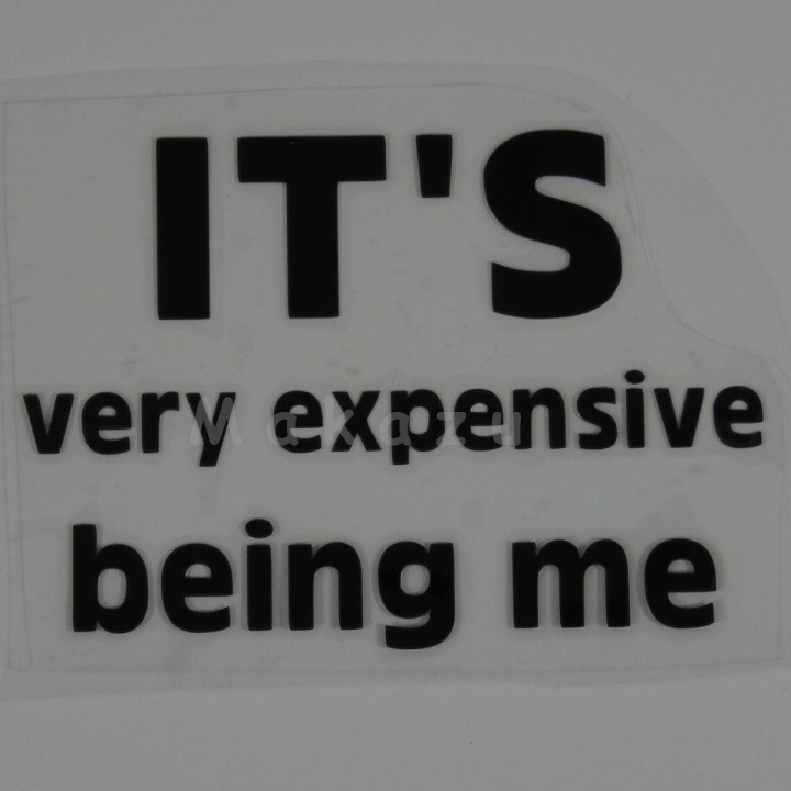 IT'S very expensive being me 15x10,5 cm